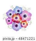 アネモネ 花束 水彩 48471221