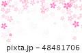 桜 花 背景のイラスト 48481706