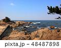笹川流れ 弁天岩 48487898