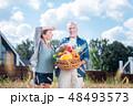 刈り入れ 収穫 実りの写真 48493573