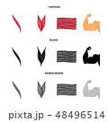 ファイバー 繊維 繊維質のイラスト 48496514