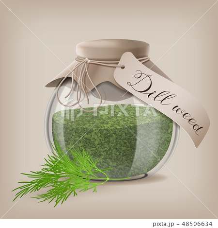 Dried dill weed in a glass jar with dill sprigs. Vector illustration 48506634