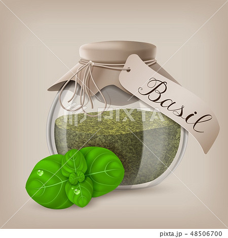 Basil dry spice in a jar with basil leaves. Vector illustration 48506700