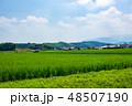 田舎 田んぼ 田園の写真 48507190