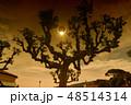 Dark scientific background - total solar eclipse 48514314