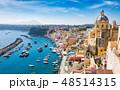 Aerial view of beautiful Procida Island, Italy 48514315