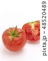 トマト 48520489