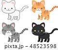 猫 ねこ ネコのイラスト 48523598