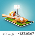 ベースボール 白球 野球のイラスト 48530307