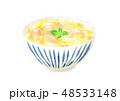 親子丼 48533148