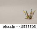 鶴 ツル 折り紙の写真 48535503