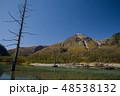 紅葉の上高地 大正池と焼岳 48538132