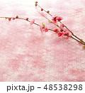 桃の枝-桃色の和紙 48538298