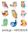 鳥 ベクトル 漫画のイラスト 48538328