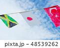 手作りの万国旗 48539262