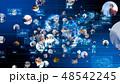ビジネス ネットワーク テクノロジーのイラスト 48542245