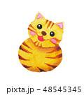 ねこ ネコ 猫のイラスト 48545345
