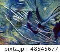 texture 48545677