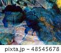 texture 48545678