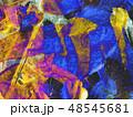 texture 48545681