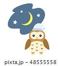 おやすみフクロウ 48555558