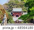 鶴岡八幡宮 本宮 舞殿の写真 48564180