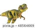 恐竜 ティラノサウルス 48564669