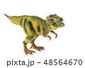 恐竜 ティラノサウルス 48564670