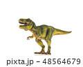 恐竜 ティラノサウルス 48564679