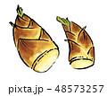 筍 竹の子 たけのこ イラスト 48573257