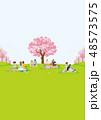 花見 春 桜のイラスト 48573575