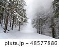 ゆき スノー 雪の写真 48577886