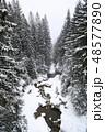ゆき スノー 雪の写真 48577890