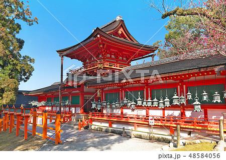 【春日大社】 (高解像度版) 奈良県奈良市春日野町 48584056