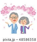 お花見 桜 夫婦のイラスト 48586358