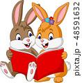 ブック 書籍 本のイラスト 48591632