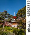 梅が満開の中山寺 48592832