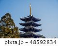 梅が満開の中山寺 48592834