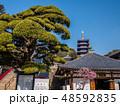 梅が満開の中山寺 48592835