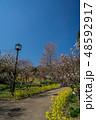 梅が満開の須磨離宮公園 48592917