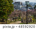 梅が満開の須磨離宮公園 48592920