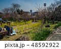 梅が満開の須磨離宮公園 48592922