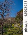 梅が満開の須磨離宮公園 48592925