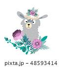 花 咲く 開花のイラスト 48593414