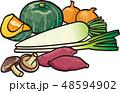 野菜 48594902