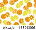 オレンジ レモン 模様のイラスト 48596666