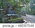 春日大社 伏鹿手水所 鹿の写真 48597546