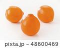 オレンジ フルーツ 果物の写真 48600469