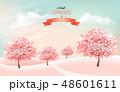背景 花 サクランボのイラスト 48601611
