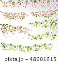 花 サクランボ チェリーのイラスト 48601615